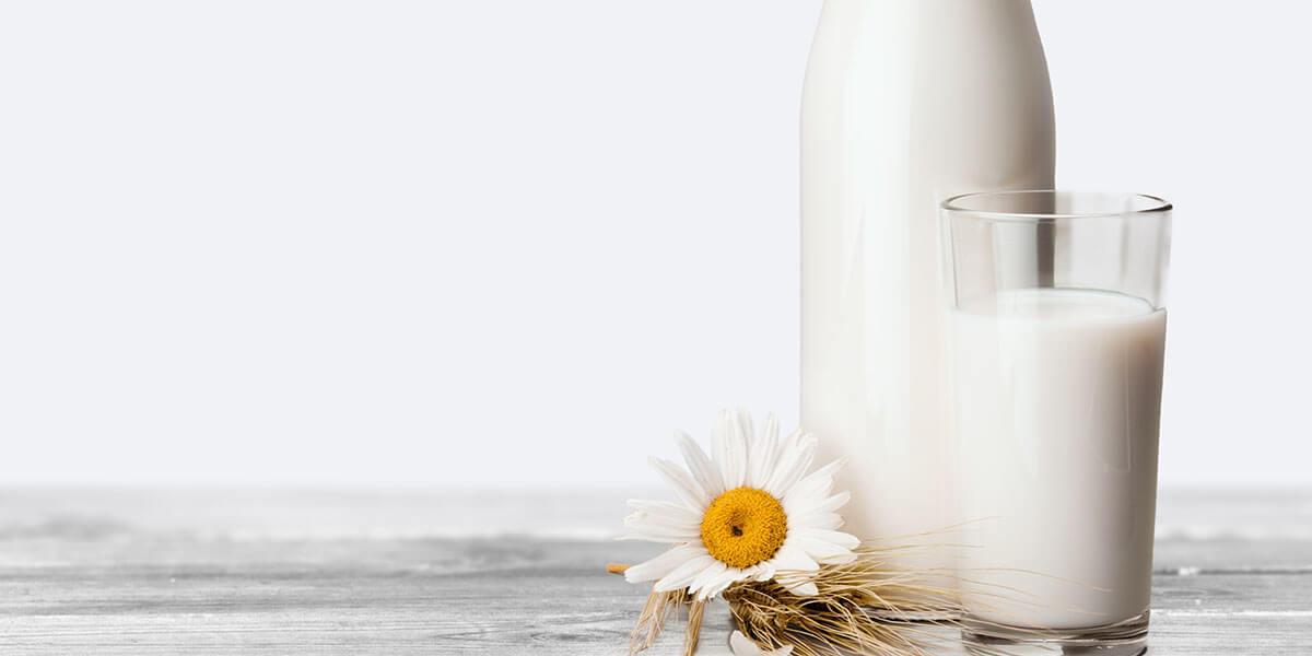 süt hakkındaki bilimsel gerçekler