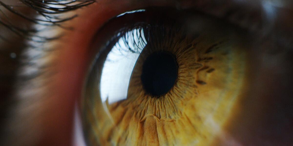 Göz Renginiz Size Ne Söylüyor?