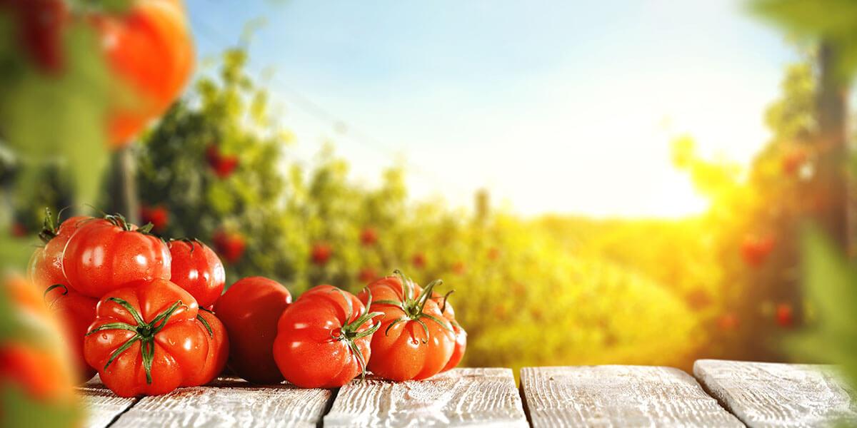 Kırmızı Besinler