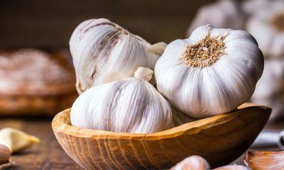 sarımsak yemek bağışıklık güçlendirir