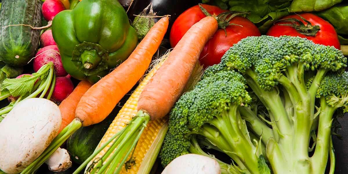 Organik beslenme