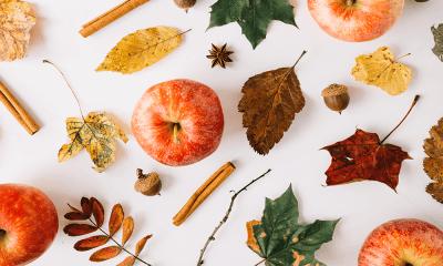 Tarçınlı Elma Tatlısı