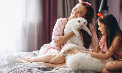 Evcil Hayvan Beslemek Stresi Azaltır
