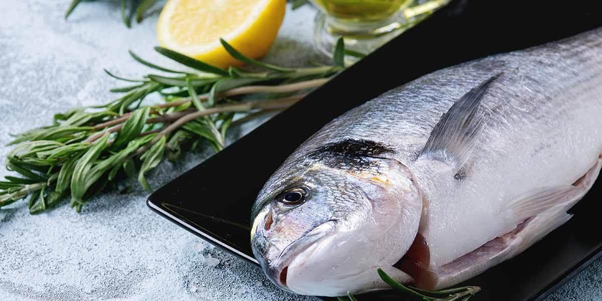 Balık Yağı Yerine, Balığın Kendisini Tüketin