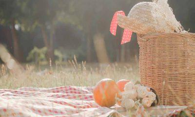 Piknik Yaparken Dikkat!