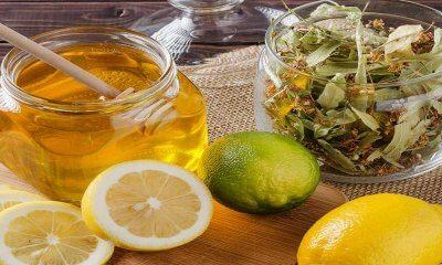 Hamilelikte Hangi Bitki Çayları İçilebilir